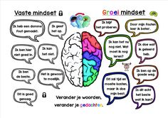 mindset : vast en groei