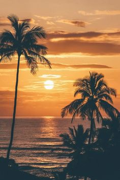 Palm trees sunset wallpapers beautiful sunset palm tree ree phone wallpapers unique sunrise in kauai of Beach Photography, Nature Photography, Photography Lighting, Photography Zine, Dental Photography, Pinterest Photography, Photography Exhibition, Photography Awards, Photography Magazine