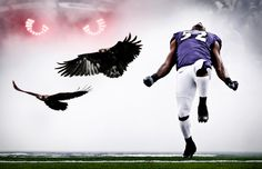 Ray Lewis with the Ravens