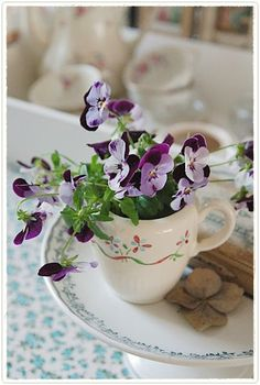 I actually picked some of my pansies yesterday and put them in tiny vases :)