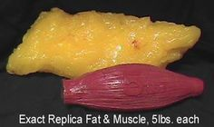 No, muscle does not weigh more than fat.  It is just dense so it takes less space....and fat doesn't turn into muscle & muscle doesn't turn into fat lol