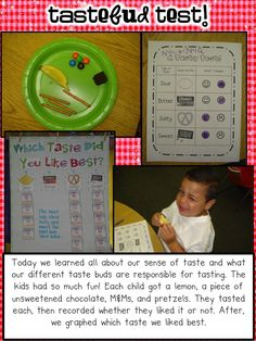 5 Senses Taste Test Activity Sheet and Graphing pieces