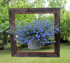 ******* LUV IT ******* ❤️❤️❤️ Framed Lobelia