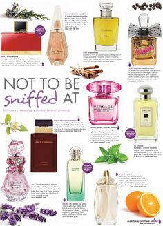 where to put perfume Best Cheap Perfume, Best Perfume, Perfume Scents, Perfume Bottles, Perfume For Women Top 10, Best Fragrances, Perfume Collection, Body Spray, Smell Good