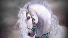 WHITE HORSE WALLPAPER - (#153781) - HD Wallpapers - [desktopinHQ.com]