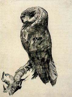 Barn Owl Viewed from the Side - Vincent van Gogh