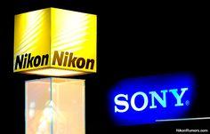 Nikon, Sony and Canon demand comparison for last quarter   Nikon Rumors