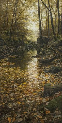 Old Mill Creek Adair Payne Amazing Photography, Landscape Photography, Nature Photography, Beautiful World, Beautiful Places, Autumn Scenes, Walk In The Woods, Jolie Photo, Nature Scenes