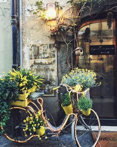 I have a light yellow vintage style bicycle if you'd like to have a display like this somewhere. I'd use potted annual flowers in the baskets.