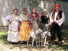 Dalmatian dogs with folks in traditional Dalmatian costumes