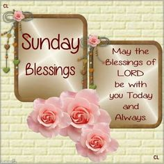 156 Best Sunday Blessings Images Happy Sunday Morning Good