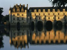 Chenonceau Château, Loire valley, France. One of my favourite renaisannce castles,