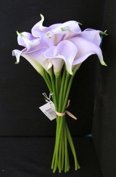 cala lily bouquet - Solomon in all his glory was not arrayed like one of these. . . if God so clothes the grass of the field, which today is, and tomorrow is thrown into the oven, will He not much more clothe you . . . ?