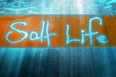Salt Life!