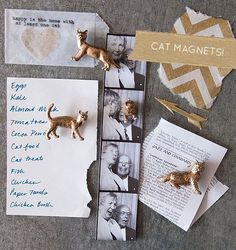DIY: cat magnets. Meow!