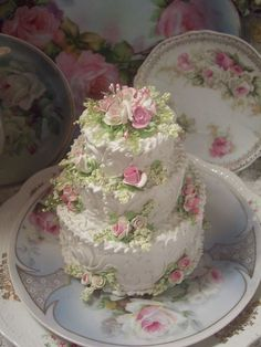 Victorian, vintage themed cake decorating on fake cake ! Gorgeous Cakes, Pretty Cakes, Cute Cakes, Amazing Cakes, Fancy Cakes, Mini Cakes, Cupcake Cakes, Unique Cakes, Creative Cakes