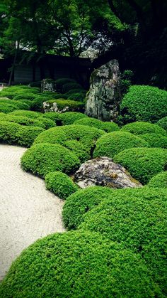 shoren-in garden
