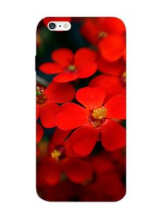 Red Flowers - Designer Mobile Phone Case Cover for iPhone 6 Plus