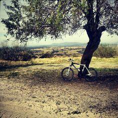 En ruta por la sierra norte de Madrid