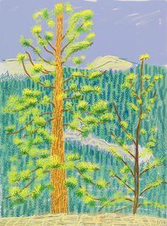 David Hockney, Untitled #08 from The Yosemite Suite - 2010 on ArtStack #david-hockney #art