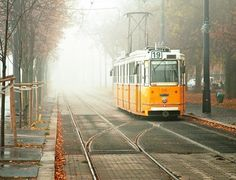 yellow tram on a foggy morning in budapest, hungary Great Places, Places To See, Life Is Beautiful, Beautiful Places, Trains, Capital Of Hungary, S Bahn, Mellow Yellow, The Good Place