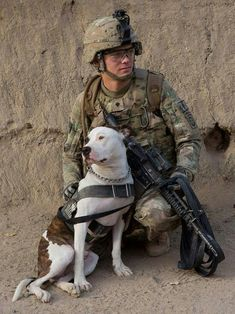 Howard (Pit Bull) a TEDD (Tactical Explosive Detector Dog) taking a break with his TEDD Handler in Afghanistan. All MWD (Military Working Dogs) & CWD (Contract Working Dogs) always seem to be FORGOTTEN for all your hard work and sacrifice. We ALL thank you for your service and pray for your SAFE RETURN HOME!!! ❤️- www.thedogflies.com
