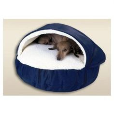 The Dog Cave for Reg and Chew?  This is perfect for the little ol' sweetums:) I think Caleb would agree this is the cutest thing!