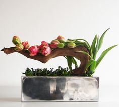 Andreas Verheijen: Tulip arrangement for Bloem & Blad Magazine / http://www.andreasverheijen.com/category/editorial/