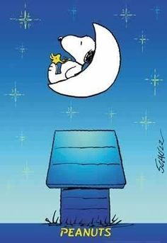 Snoopy and Woodstock sitting in the moon