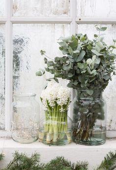 Eucalyptus & hyacinths in winter bouquets   Granit julen 2016