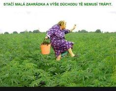 Důchod... | torpeda.cz - vtipné obrázky, vtipy a videa