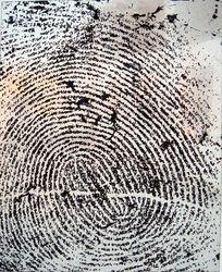 Suspect series, right thumb  Daniel Baker (2009)