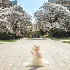 """""""I only have one spot left for my UW Spring mini session on March 22.  Get 5 photos for $65 plus tax.  Last spot is at 12:45 pm.  Who's going to get it? #uwcherryblossoms #uw #babies #babygirl #springminis #springhassprung #seattlephotographer #seattle #dallas #dallasphotographer #ilovebabies #issaquahphotographer #rentonphotographer #redmondphotographer #kirklandphotography #kirklandphotographer #bellevuephotographer #bothellphotographer #jackiesteinkephotography"""" Photo taken by…"""