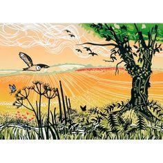 'Wild Patch' by Printmaker Rob Barnes. Blank Art Cards By Green Pebble.co.uk. wwww.greenpebble.co.uk