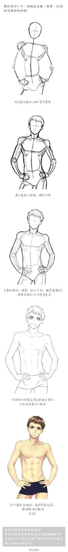 Male body muscles