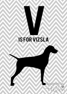 V is for Vizsla Printable art