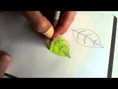 In this video I'm showing the difference between colouring a leaf with only one layer or sometimes two layers of colour and adding many colours on top of eac...