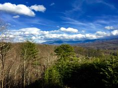 It's hard to stop staring at the beautiful colors of spring in Gatlinburg and the Smokies.
