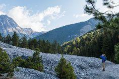 Röhrende Hirsche und zwei Pässe - In der Natur unterwegs Der Bus, Mountains, Nature, Travel, Coal Tit, National Forest, Naturaleza, Trips, Viajes