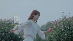 Park Shin Hye, Korean Actresses, Dancer, Wonder Woman, Korean Actors, Wonder Women