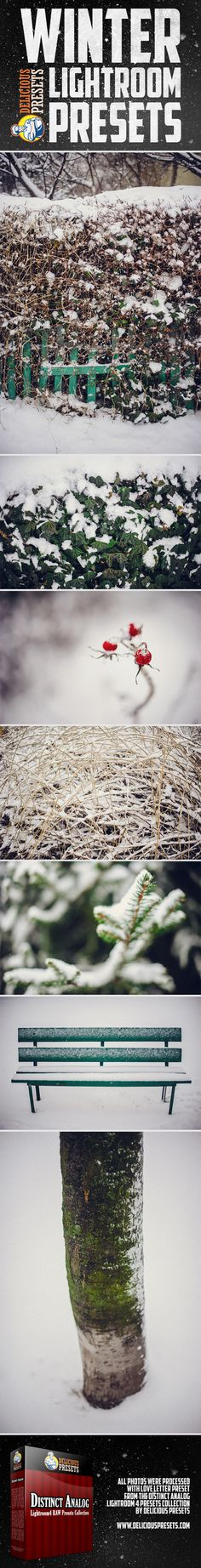 Winter Lightroom Presets - Distinct Analog Collection from Delicious Presets.    http://www.deliciouspresets.com/lightroom-4-presets/raw-presets/distinct-analog