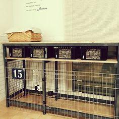 My Shelf,トイプードル,DIY,セリア,カインズホーム,プレート,壁紙屋本舗,ドッグゲージ,カインズホームのペンキ,犬と暮らす,セリアの折り紙,テラコッタ風クッションフロア,オスモカラー ウォールナット yokoko45の部屋