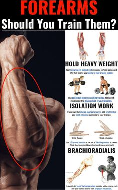 Gym Workout Chart, Gym Workout Tips, Weight Training Workouts, Gym Training, Fun Workouts, Forearm Workout, Biceps Workout, Big Forearms, Bodybuilding Workouts