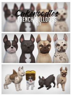 French Bull Dogs for The Sims 4 by Cakenoodles