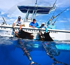 Salt Life fishing - Seatech Marine Products  Daily Watermakers