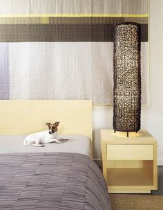 platform bed with drawers and a dog