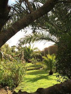 West Cornwall, Farm Gardens, Italian Style, Wildlife, Sidewalk, Seasons, Plants, Side Walkway, Seasons Of The Year
