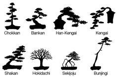 Le bonsaï : Des styles très codifiés                                                                                                                                                                                 Plus
