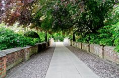 This serene passage leads you to the Clare college bridge and to the other bank of the river Cam to the Backs.