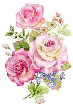 Beautiful Flower Drawings, Flower Art Drawing, Beautiful Flowers Wallpapers, Acrylic Painting Flowers, Watercolor Flowers, Flower Art Images, Bunch Of Flowers, Botanical Flowers, Arte Floral
